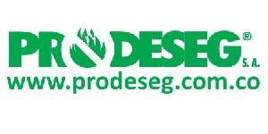 300X150-prodeseg